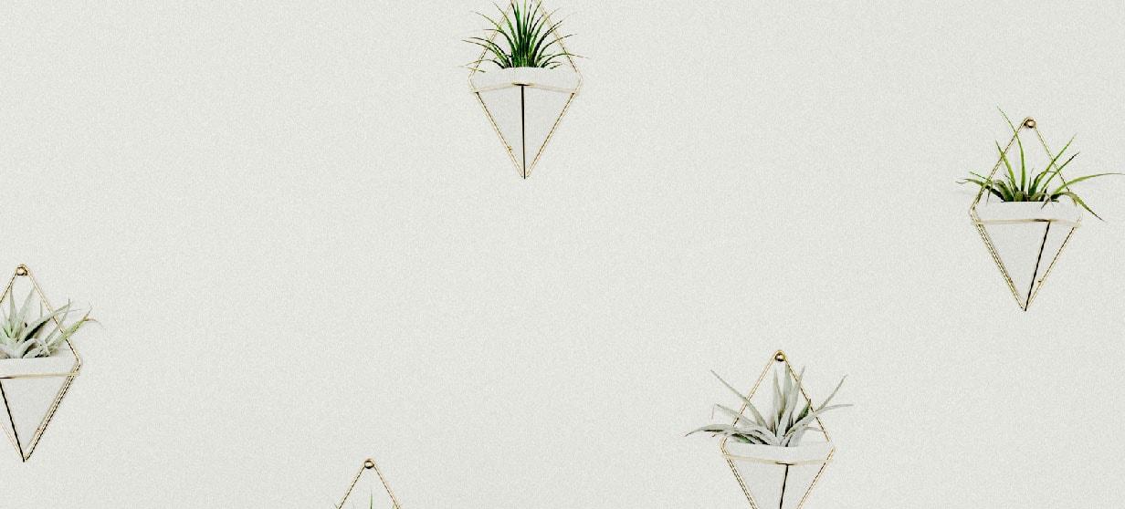 Muurdecoratie met planten