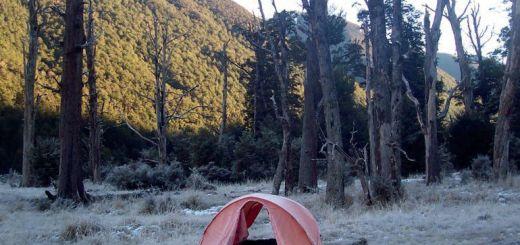 leven in de wildernis