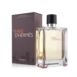 Hermes – Terre d'Hermes Eau De Toilette Vapo 500 ml
