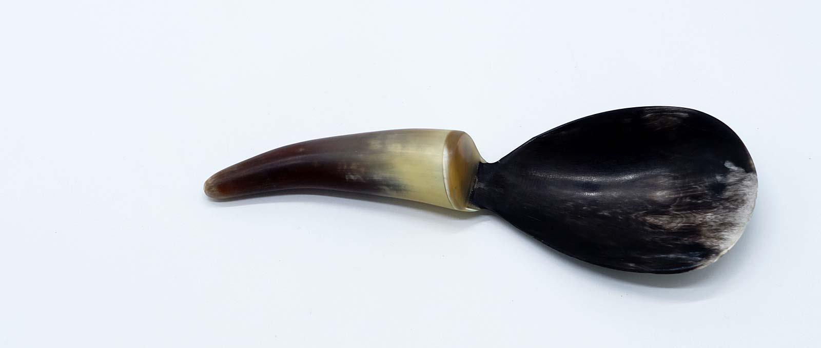 spoon-bone
