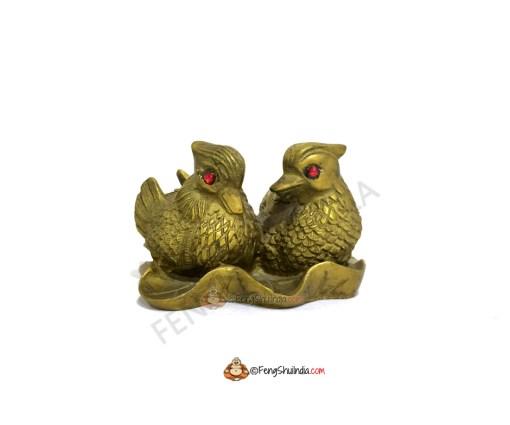 Mandarin Ducks-Feng Shui Cure for Love