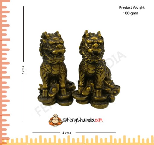 Dragon Lions for Protection