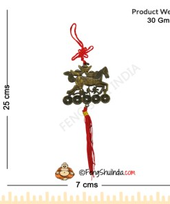 Feng Shui Fame , Fortune, Recognition, Resilience, Status Hanging