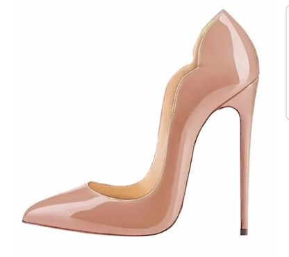 The Ferago Celine Pumps New 19