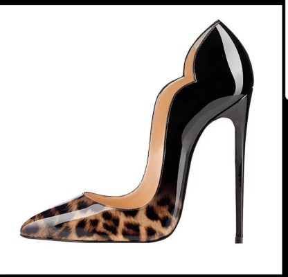 The Ferago Celine Pumps New 3