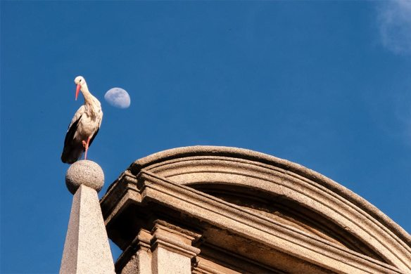 Taller de fotografía Alcalá de Henares