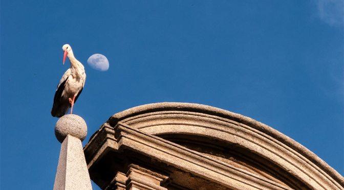 Nuevo taller de fotografía en Alcalá de Henares