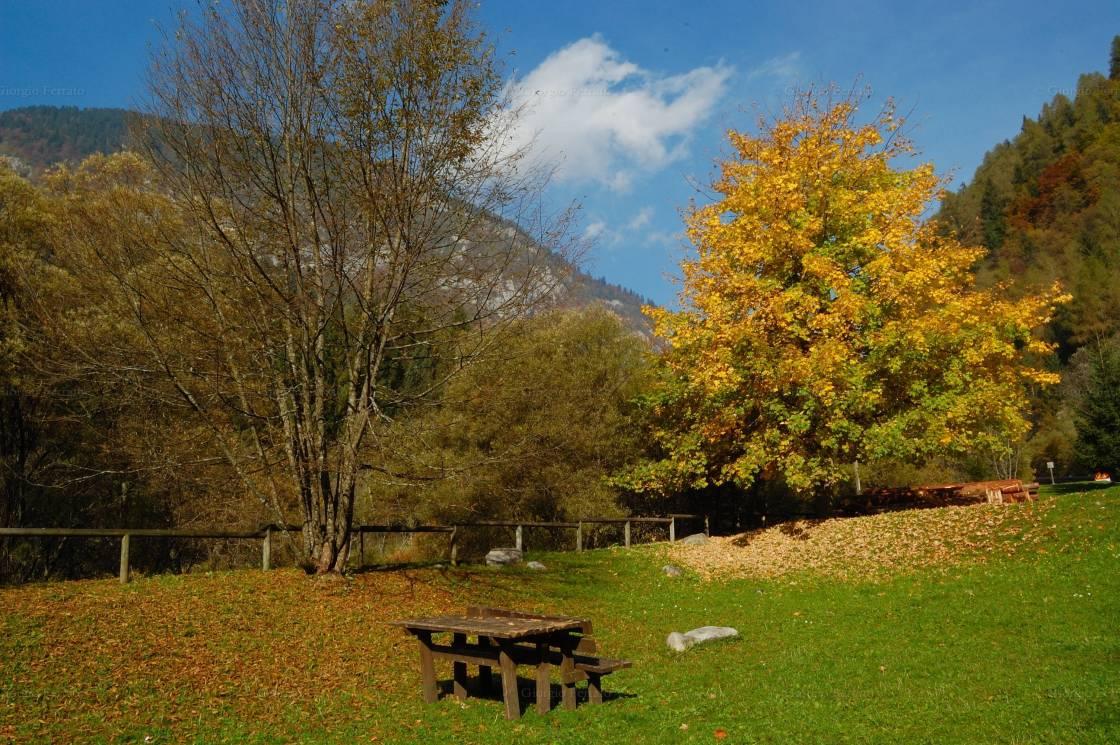 I colori dell'autunno