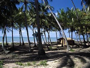 Tranquilidade: Clima rústico é marca registrada da maioria das praias