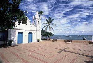 Praia do Forte: Bucolismo à beira mar<br>