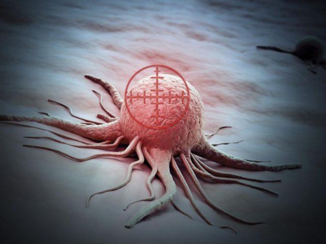 cellules cancéreuses suicide fin chimiothérapie