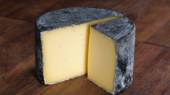 IL FORMAGGIO….. un cibo fermentato…. nozioni di base