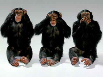 https://i1.wp.com/www.fernan.com.es/wp-content/uploads/2007/04/sin_censura_no_evil.jpg