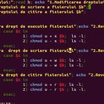Tutorial: Programando em Shell Script