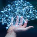 Redes neurais e Ordenamento territorial