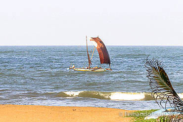 Negombo - 7 Days / 6 Nights Package Tour Sri Lanka
