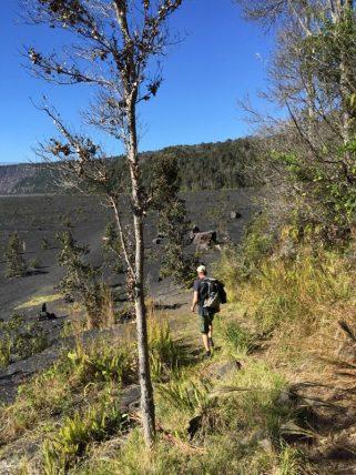 Big Island Hawaii - Trail im National Park Volcano - es geht nach unten