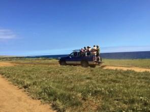Big Island Hawaii - Green Sands - so wäre der Hinweg leichter gewesen