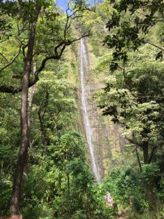 Maui Hawaii - Wasserfall