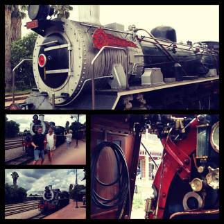And now we take the rovos rail from pretoria To Cape town
