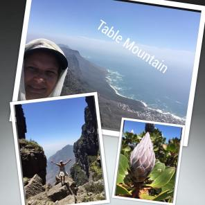 Done ! Hiking To the top of table Mountain