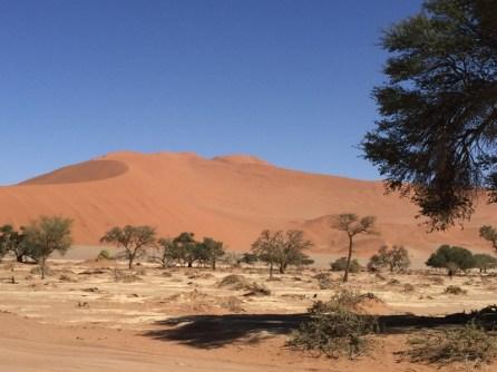Afrika-Namibia-70