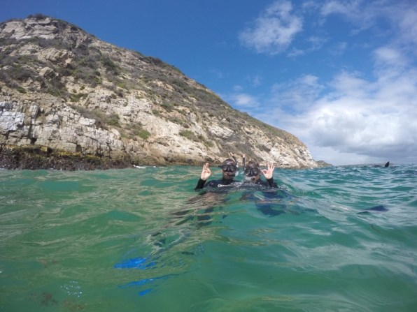 Afrika-Garden-Route - Swim with Seal - Plettenberg Bay
