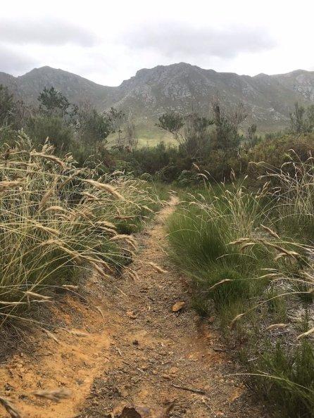 Afrika-2018-Outback-28
