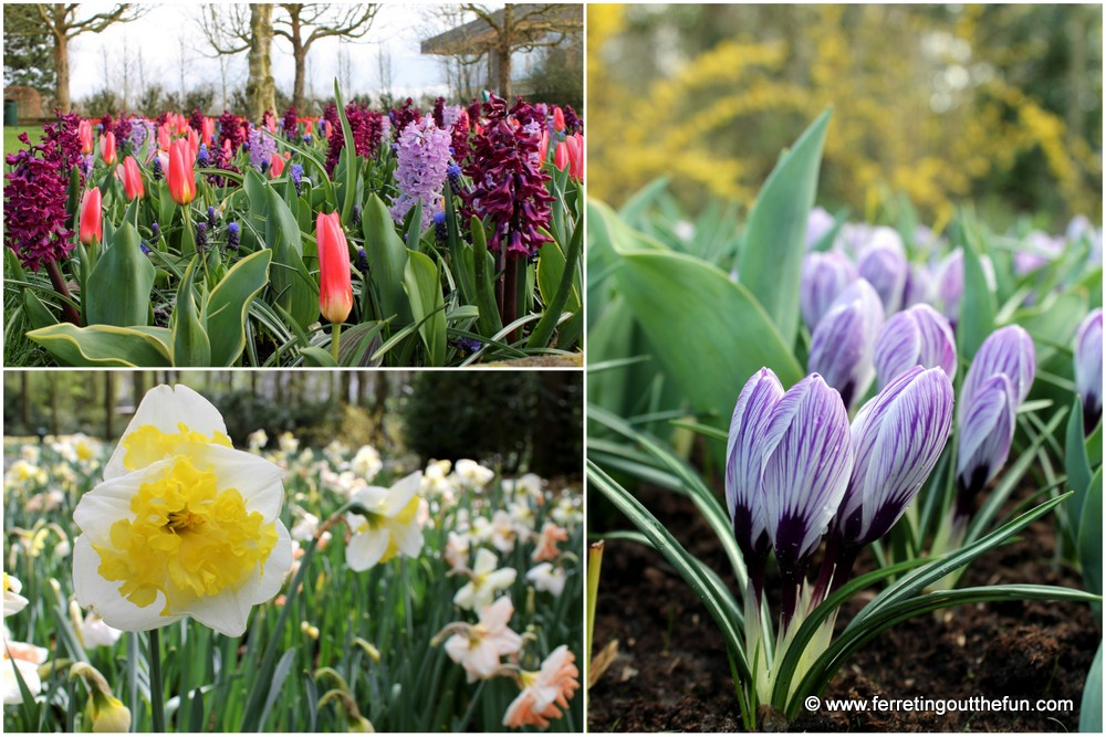 keukenhof gardens in april