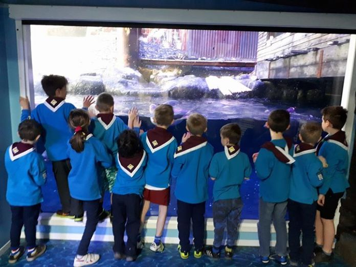 After a magical night sleeping under the ocean the beavers' fun continued this m...