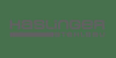 ferro-sped-partner_haslinger