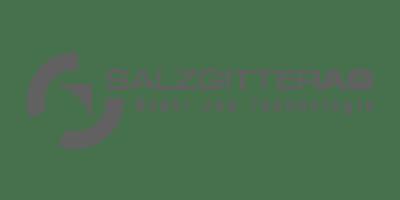 ferro-sped-partner_salzgitter