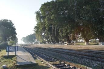 Die Bahnhofsanlagen sind meist sehr gepflegt, u.a. werden häufig Blumenbeete und Gärten angelegt. Hier in Golra Sharif geben die hohe Bäume dem Bahnhof ein besonderes Flair