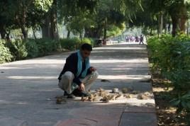 Der Taj Mahal-Mann und seine Streifenhörnchen