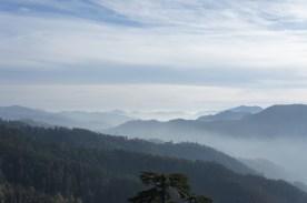 """Ausblick von Shimlas """"The Ridge"""""""