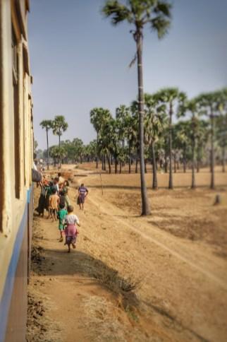 Die Erklärung: Ab und zu hält der Zug (vermutlich an willkürlichen Punkten) und die Reisenden (alles Einheimische) werfen den Kindern Süßigkeiten zu