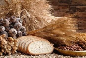 Gluten e Infertilidad