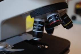 Espermatograma: Qué es y su importancia para el hombre
