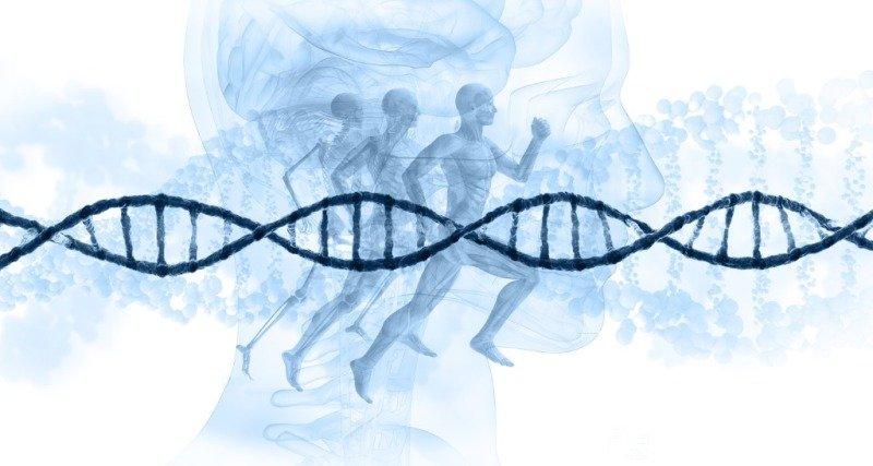 Regenerative Medicine and its Therapies