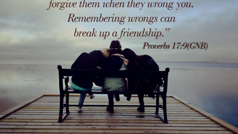 Word of the day: Proverbs 17:9 – The Truss of Friendship