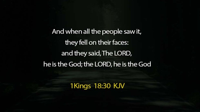 Word of the day: 1 Kings 18: 30 – The LORD alone is GOD