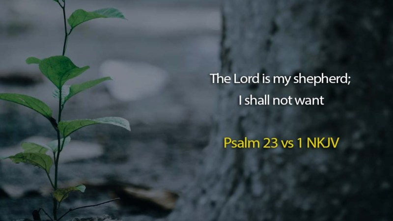 Word of the day: Psalm 23 vs 1 – I Shall not Want