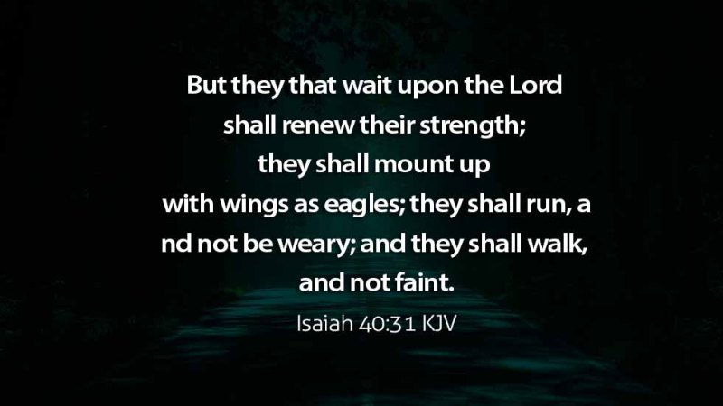 Word of the day: Psalms 27:14 – Wait on the Lord