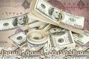 سعر الدولار اليوم مقابل الجنية المصرى ٢١-٢-٢٠١٧