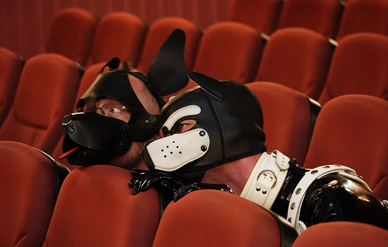 Puppies in Cinema - Copyright 2020, fesselblog.de