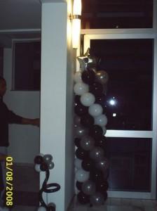 diversos 2008 218