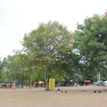 Sziget Trees