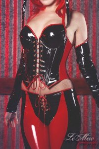 Bloodrayne cosplay PVC Costume 2