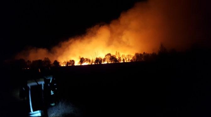 Moorbrand bei Nacht in Steinfeld
