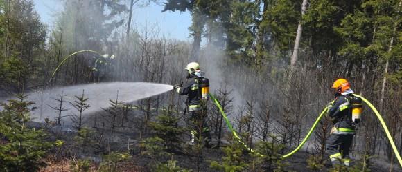 20190420 Christbaumbrand zu Ostern p7ChpCyzIS